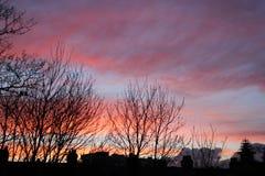 Nuages de ciel de vin rouge Image libre de droits
