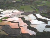 Nuages de coucher du soleil dans des paddys d'élévation dans Sagada Image libre de droits