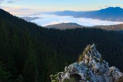 Nuages de mer au-dessus de montagne carpathienne Photographie stock libre de droits