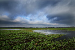 Nuages de pluie dramatiques foncés au-dessus de paysage de campagne Photographie stock
