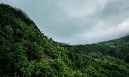 Nuages de pluie frôlant la crête de montagne et le x28 ; Jungle& x29 ; Photographie stock libre de droits