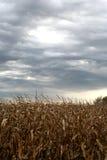 Nuages de tempête Image libre de droits