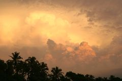 Nuages de tempête au-dessus de forêt au coucher du soleil Images stock