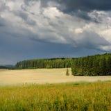Nuages de tempête au-dessus de zone de blé Image libre de droits