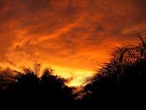 Nuages de tempête oranges lumineux d'or jaune au coucher du soleil Images stock