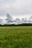 Nuages de Timelapse se déplaçant au-dessus du champ Longueur de paysage de ressort Image stock