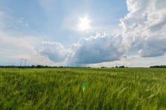 Nuages de Timelapse se déplaçant au-dessus du champ Longueur de paysage de ressort Images libres de droits