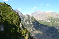 Nuages en bois de vert de nature de montagne Photos stock