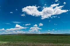 Nuages et ciel bleu avec l'herbe verte Images stock