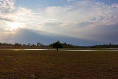 Nuages et lumière de ciel Photo libre de droits