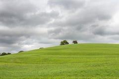 Nuages foncés au-dessus d'une colline d'herbe (centre) Image stock