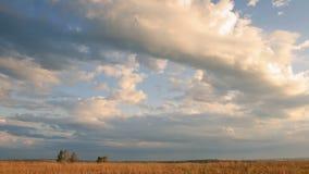 Nuages mobiles au-dessus de champ un coucher du soleil, laps de temps banque de vidéos