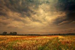 Nuages pluvieux foncés Photographie stock