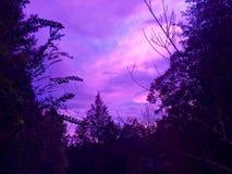 Nuages pourpres rosâtres au coucher du soleil Images stock