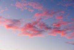 Nuages roses pelucheux en ciel bleu Images stock