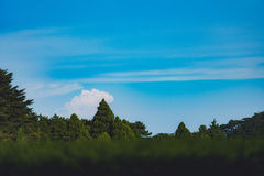 Nuages sur des montagnes de LUSHAN Image libre de droits