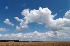 Nuages sur le champ de blé Photos libres de droits