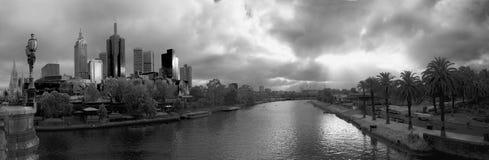 100 nuances de gris Photo libre de droits