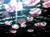 Nuances de parapluie Images libres de droits