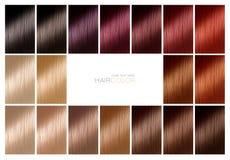 Nuancier pour la teinture capillaire teintes Palette de couleurs de cheveux avec une gamme photographie stock libre de droits