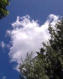 Nube Fotografía de archivo