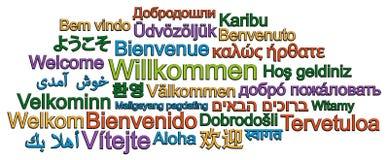 Nube AGRADABLE de la palabra en muchos otros idiomas ilustración del vector
