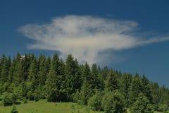 Nube atómica Fotos de archivo