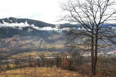 Nube blanca Fotografía de archivo