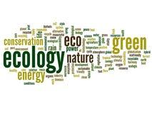 Nube conceptual de la palabra de la ecología Foto de archivo libre de regalías