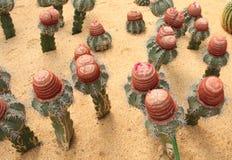 Nube de la capa del desierto Imagen de archivo
