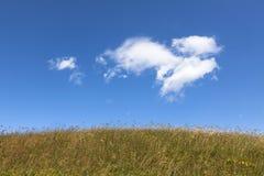 Nube de la fantasía Imagen de archivo libre de regalías