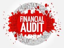 Nube de la palabra de la auditoría financiera Fotos de archivo libres de regalías
