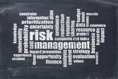 Nube de la palabra de la gestión de riesgos Imagen de archivo