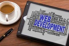 Nube de la palabra del desarrollo web Imagen de archivo libre de regalías