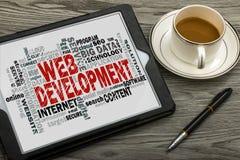 Nube de la palabra del desarrollo web Foto de archivo libre de regalías