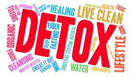 Nube de la palabra del Detox Imagen de archivo libre de regalías