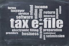 Nube de la palabra del e-fichero del impuesto Fotos de archivo libres de regalías
