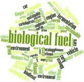 Nube de la palabra para el combustible biológico Fotografía de archivo