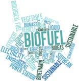 Nube de la palabra para el combustible biológico Fotografía de archivo libre de regalías