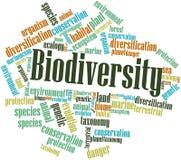 Nube de la palabra para la biodiversidad Fotos de archivo libres de regalías