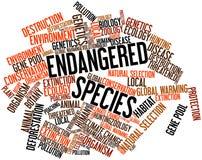 Nube de la palabra para la especie en peligro Foto de archivo