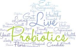 Nube de la palabra de Probiotics Fotos de archivo libres de regalías