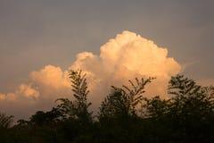 Nube de tormenta sobre selva tropical Imágenes de archivo libres de regalías