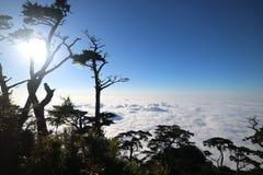 Nube del mar Imagenes de archivo