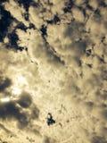 Nube del verano que mira en la Florida imagen de archivo