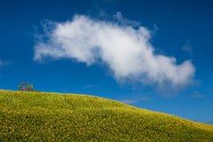 Nube del vuelo Foto de archivo libre de regalías