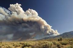 Nube di fumo da un incendio violento della California Fotografia Stock