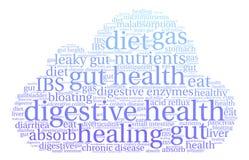Nube digestiva de la palabra de la salud Imagen de archivo