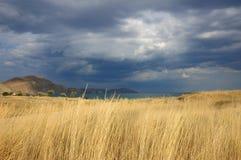 Nube e hierba Imagen de archivo libre de regalías