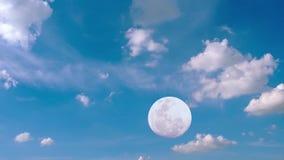 Nube en fondo del cielo azul almacen de metraje de vídeo